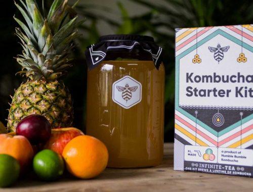 kombucha recipes